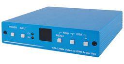 CV/SV TO HDMI SCALER BOX - CYPRESS