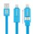 2 IN 1 MICROUSB AND LIGHTNING USB CABLE